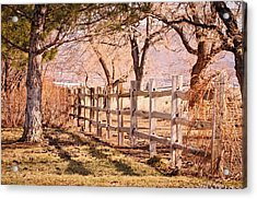 Acrylic Print featuring the photograph Horsemans Park Reno Nevada by Janis Knight