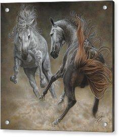 Horseplay II Acrylic Print