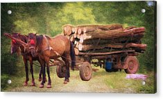 Horsepower Acrylic Print by Jeff Kolker