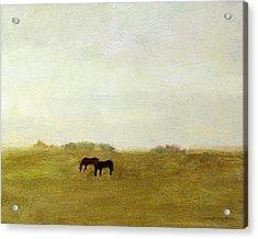 Horses Afield Acrylic Print by J Reifsnyder