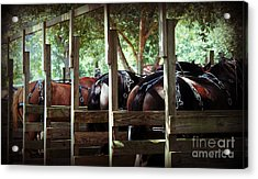 Acrylic Print featuring the photograph Horses Arse by Maddalena McDonald