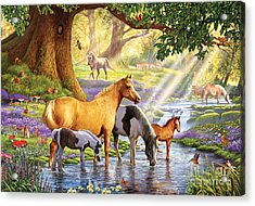 Horses By The Stream Acrylic Print