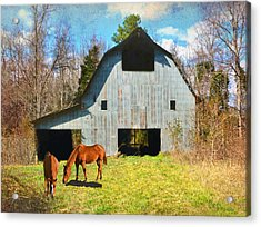 Horses Call This Old Barn Home Acrylic Print by Sandi OReilly