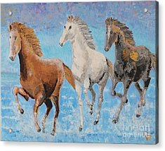 Horses From Troy Acrylic Print