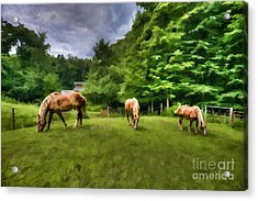 Horses Grazing In Field Acrylic Print by Dan Friend