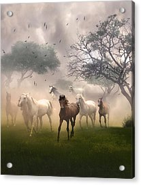 Horses In The Mist Acrylic Print