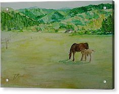 Horses Mare Foal Pastures Rural Landscape Original Art Oregon Western Artist K. Joann Russell Acrylic Print