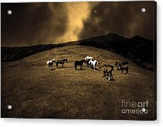 Horses Of The Moon Mill Valley California 5d22673 Sepia Acrylic Print by Wingsdomain Art and Photography