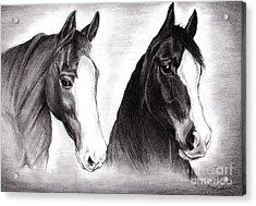 Horses Acrylic Print