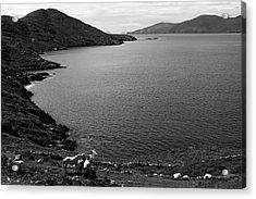 Horseshoe Coast Acrylic Print