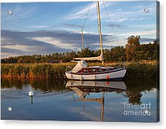 Horsey Mere In Evening Light Acrylic Print by Louise Heusinkveld