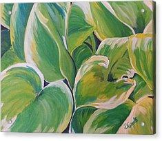 Hosta Garden Acrylic Print