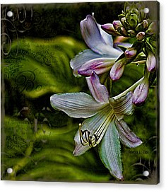 Hosta Lilies With Texture Acrylic Print