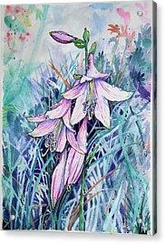 Hosta's In Bloom Acrylic Print