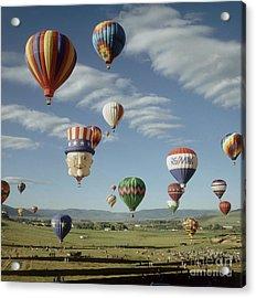 Hot Air Balloon Acrylic Print by Jim Steinberg
