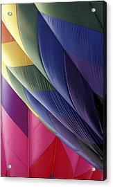Hot Air Balloons 2 Acrylic Print by Gail Maloney