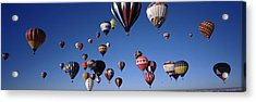 Hot Air Balloons Floating In Sky Acrylic Print by Panoramic Images