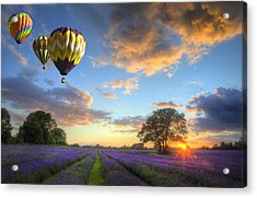 Hot Air Balloons Flying Over Lavender Landscape Sunset Acrylic Print
