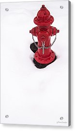 Hot And Cold Acrylic Print by Steven Milner