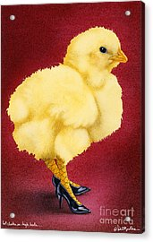 Hot Chicks In High Heels... Acrylic Print