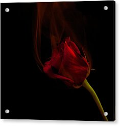 Hot Love Acrylic Print by Max Ratchkauskas