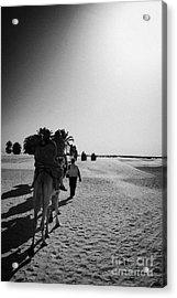 hot sun beating down on tourists taking a camel ride into the sahara desert at Douz Tunisia Acrylic Print by Joe Fox