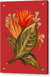 Acrylic Print featuring the digital art Hot Tulip R by Christine Fournier