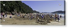 Hot Water Beach Acrylic Print by Tim Mulholland