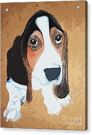 Hound Dog Acrylic Print by Rachel Barrett
