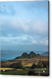 Hound Tor On Dartmoor  Acrylic Print
