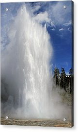 How Grand It Is Acrylic Print