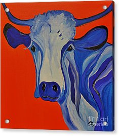 How Now Blue Cow Acrylic Print