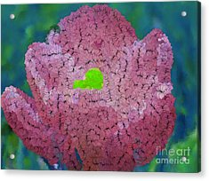 How Things Were Teal Pink Neon Green Acrylic Print by Holley Jacobs