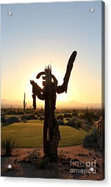 Howdy Stranger Welcome Acrylic Print by Crush Creations