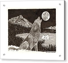 Howling Coyote Full Moon Ho0wling Acrylic Print by Jack Pumphrey