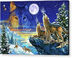 Howling Wolves Acrylic Print by Adrian Chesterman