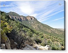 Acrylic Print featuring the photograph Huachuca Mountains by Gina Savage