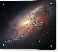 Hubble View Of M 106 Acrylic Print
