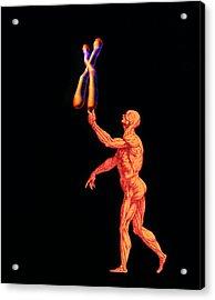 Human And Chromosome Acrylic Print