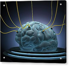 Human Brain With Sensors Acrylic Print