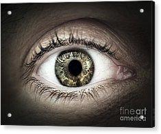 Human Eye Macro Acrylic Print