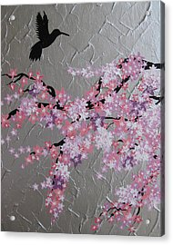 Humming Bird With Cherry Blossom Acrylic Print by Cathy Jacobs