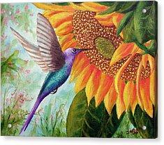 Humming For Nectar Acrylic Print by David G Paul