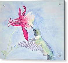 Acrylic Print featuring the painting Hummingbird And Columbine by Laurel Best