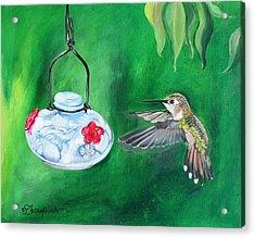 Hummingbird And The Feeder Acrylic Print