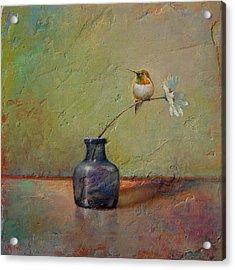 Hummingbird And White Daisy Acrylic Print by Lori  McNee