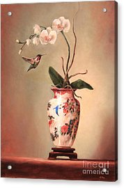 Hummingbird And White Orchid Acrylic Print by Lori  McNee