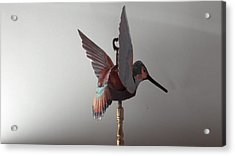 Hummingbird Finial Acrylic Print by Jessica Dietz