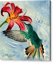 Hummingbird Acrylic Print by Melly Terpening