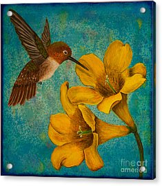 Hummingbird With Yellow Jasmine Acrylic Print